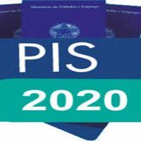 PIS 2020